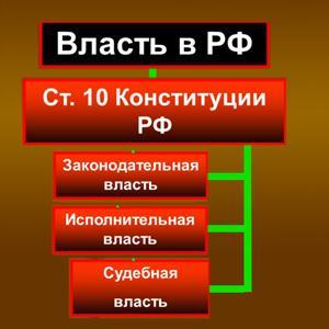 Органы власти Пестрецов